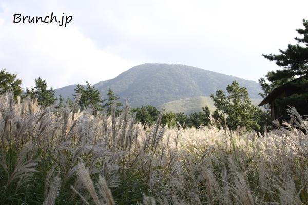 20121007_151023.JPG
